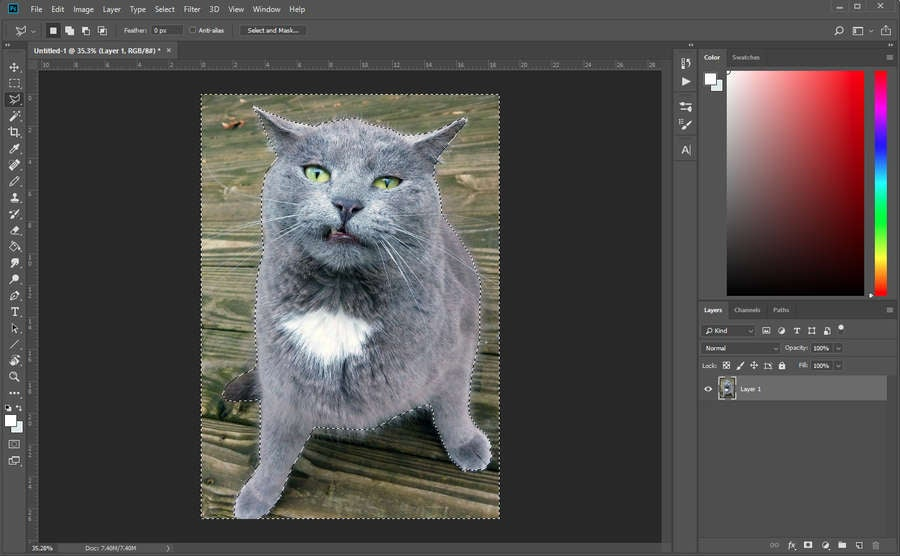 Photoshop Selection