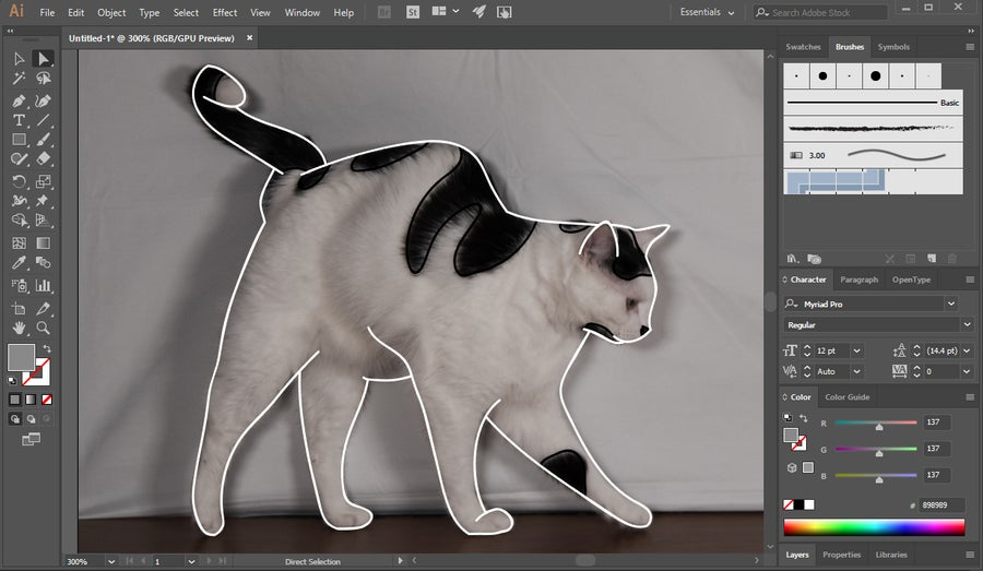 Adobe Illustrator Vector