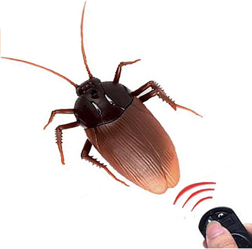 Remote Control Cockroach Toy.