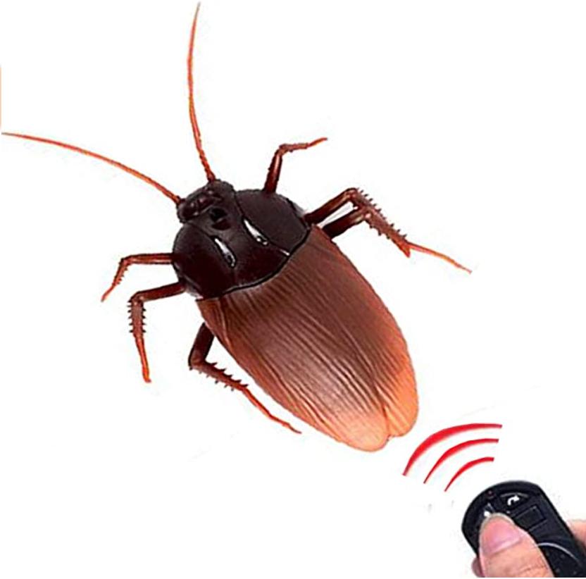 Remote Control Cockroach Toy.