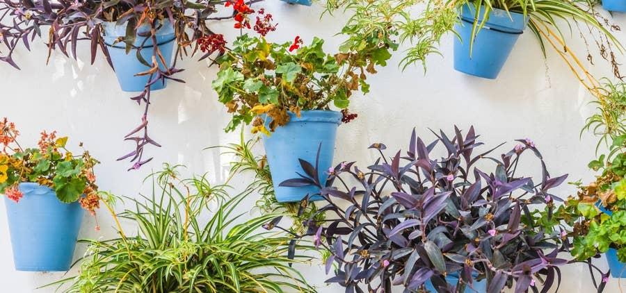 verticle flower pots