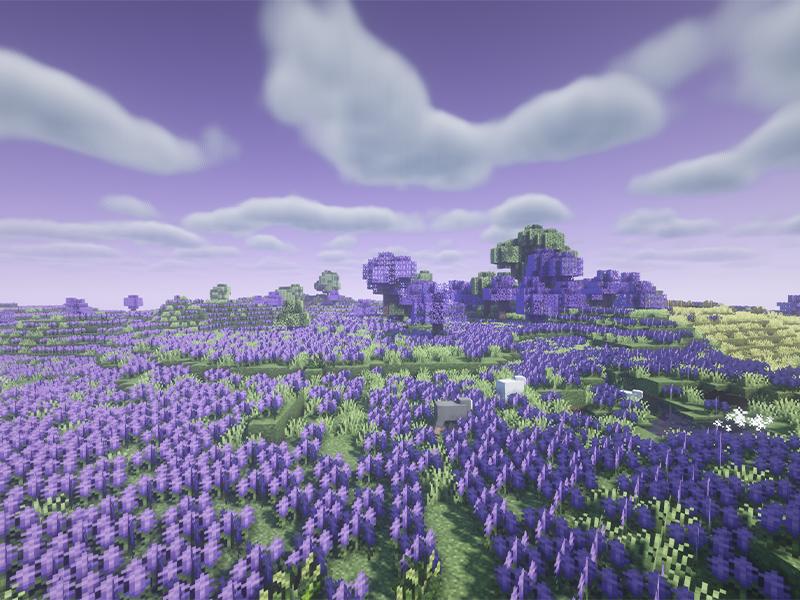 biomes o plenty lavender fields forge mod minecraft