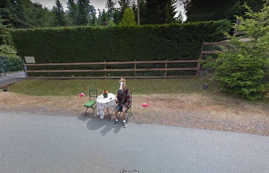 horse boy canada google street view