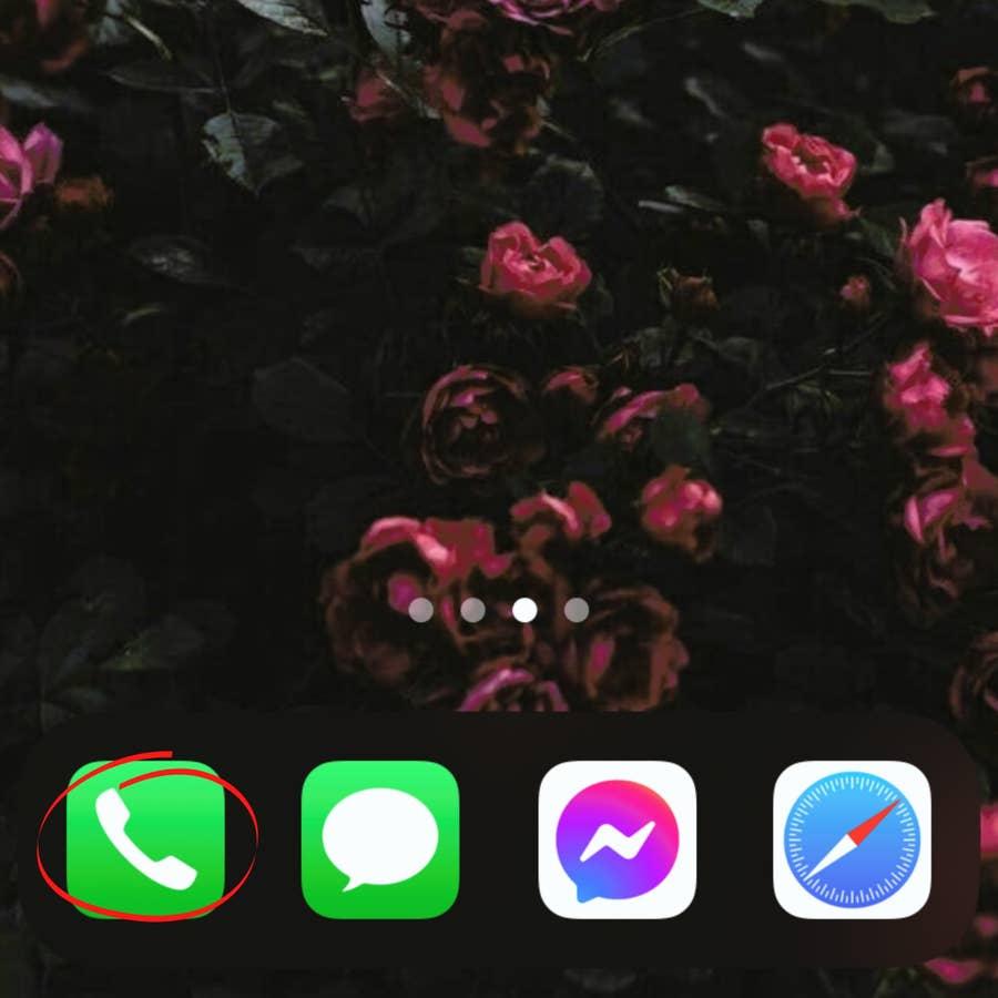 Open the Phone App