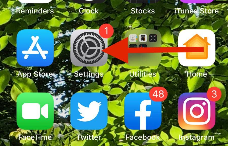 Arrow to iPhone Settings