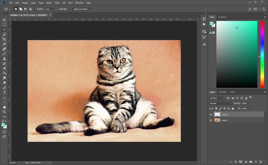 Background Selection Photoshop