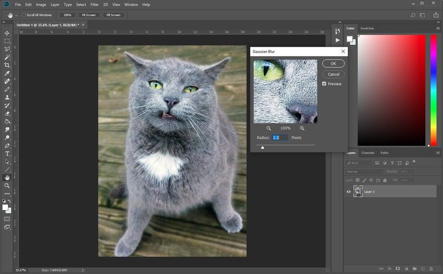 Blur Background Photoshop