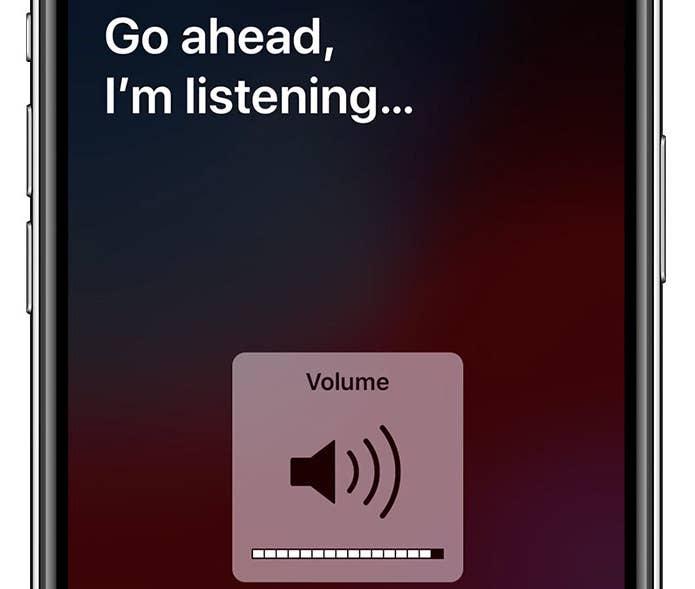 Siri Volume Adjust
