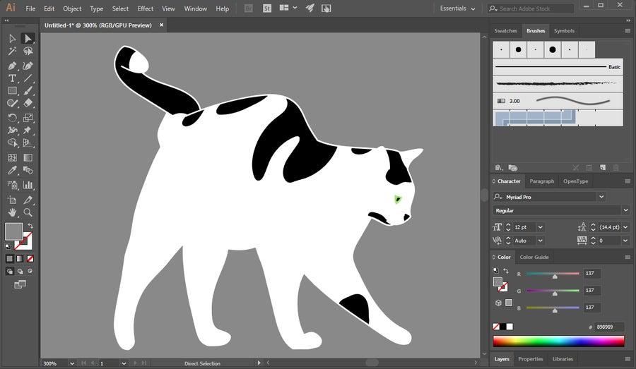 Illustrator Vector Art