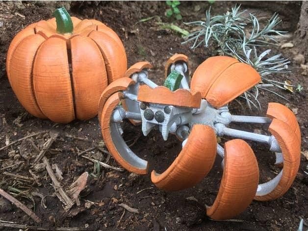 Spider pumpkin transformer