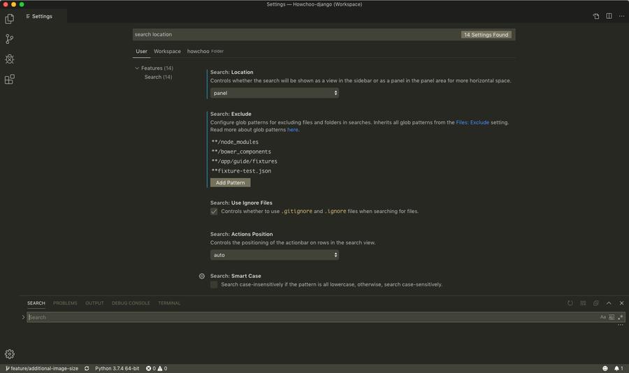 VS Code Search panel in bottom