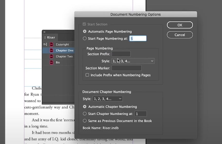 Document Numbering Options InDesign