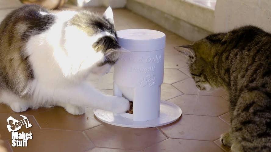 3d printed cat feeder