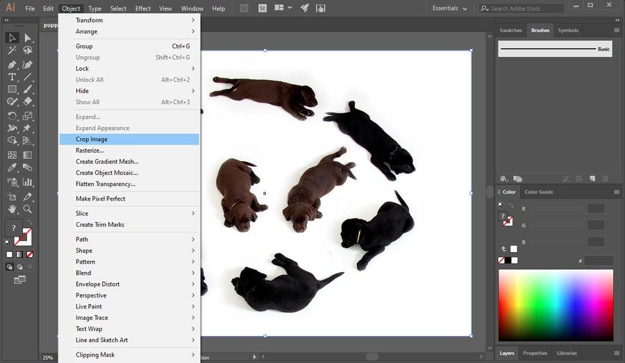 Crop Image Illustrator