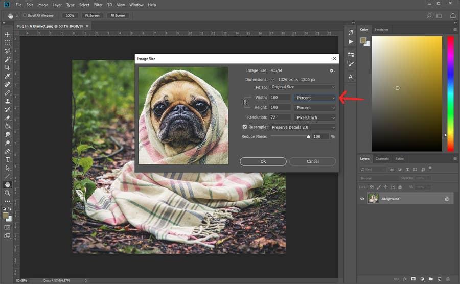 Photoshop Image Size Percentage