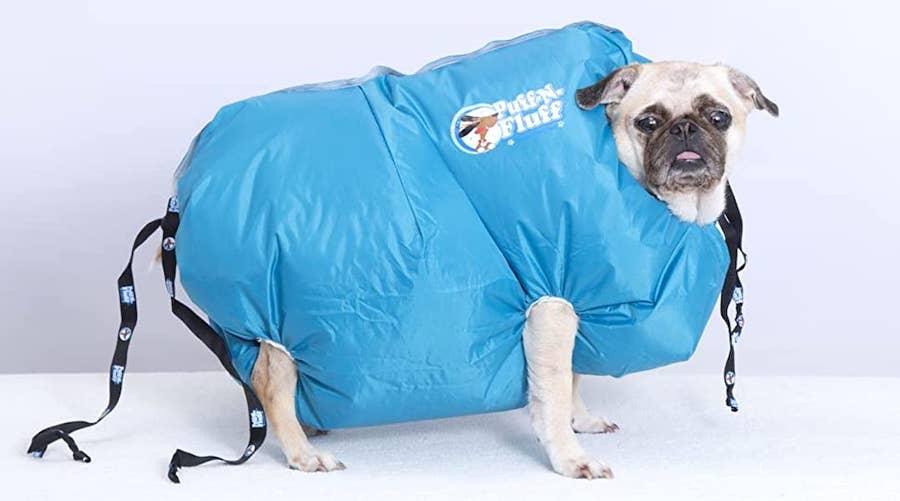 Puff n Fluff Dog dryer