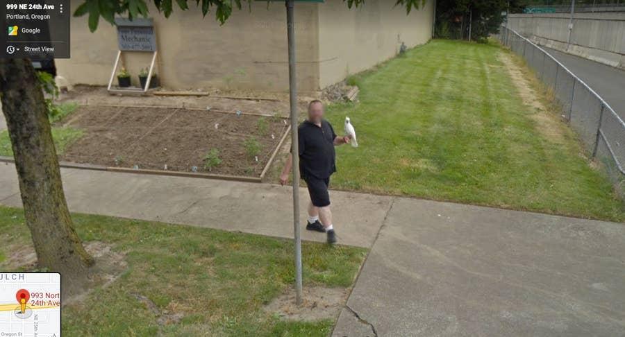 portand man with cockatoo