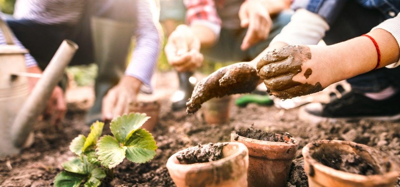 children veggie garden