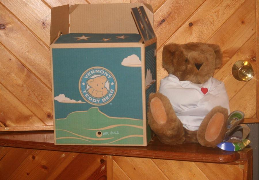 Crazy for You Teddy Bear.