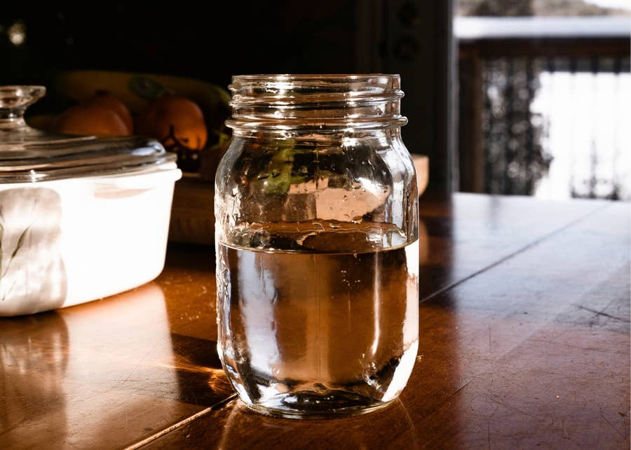 Simple syrup in a jar.