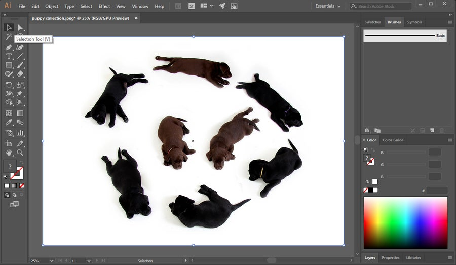 Select Image Illustrator