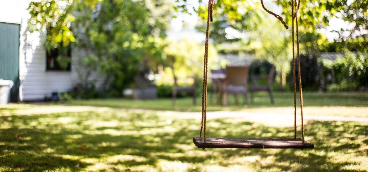 backyard tree swing
