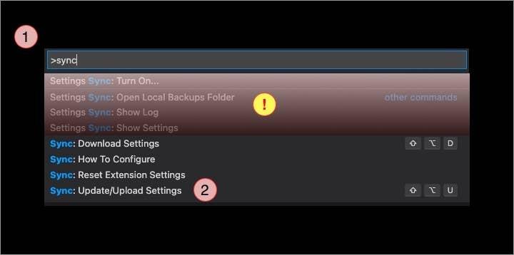 Settings Sync commands