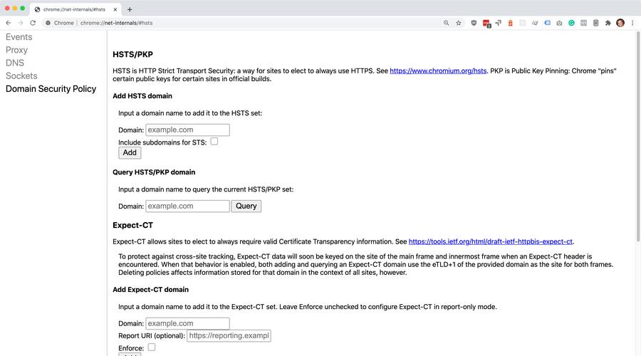 net-internals screen in Chrome