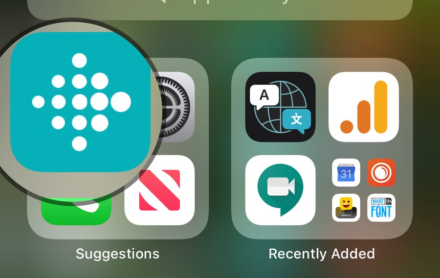Fitbit App on iPhone