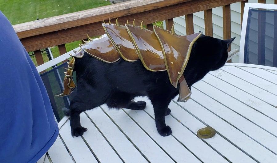 3D Cat Armor