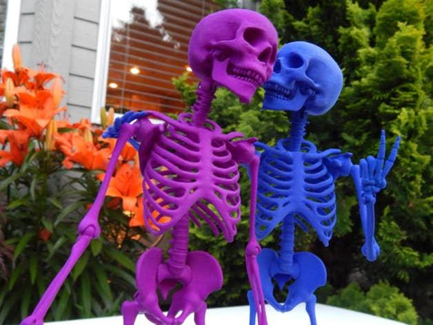 Articulated skeleton friends