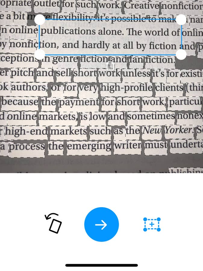 What the Font Box around selected text