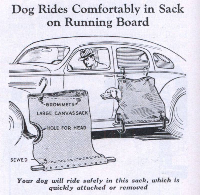 Dog sack for cars running boards