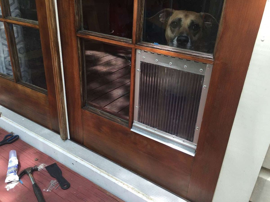 DIY Dog Door for French Door Window Panes
