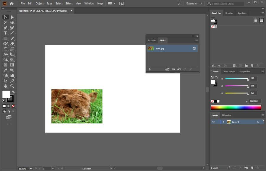 Illustrator Image Links