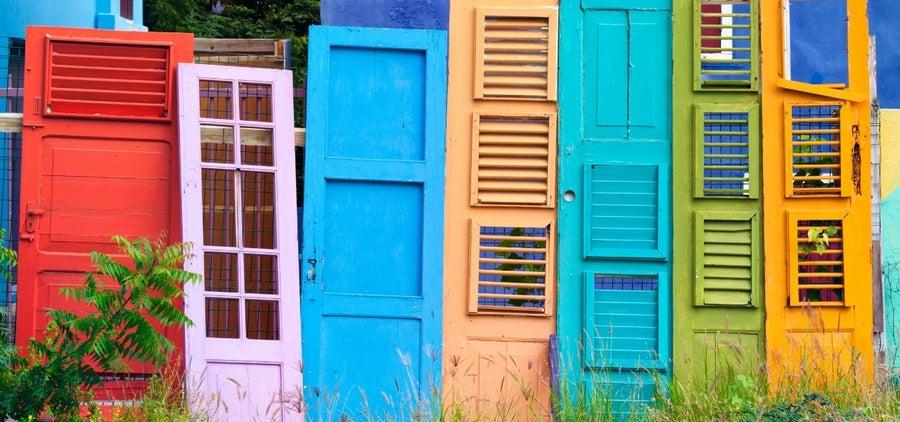 bright color in backyard