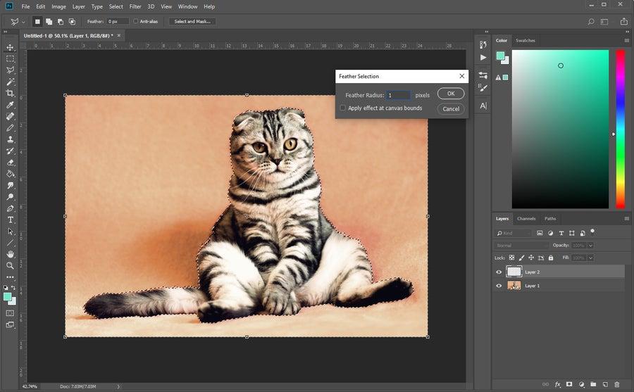 Refine Selection Photoshop