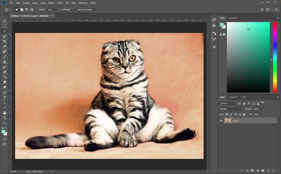 Image Open in Photoshop