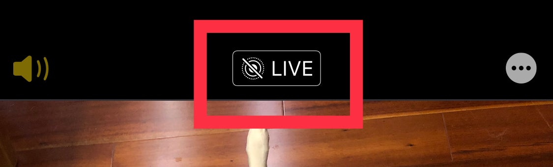 live photo button iPhone