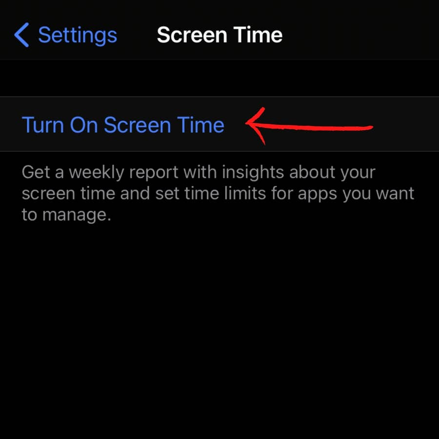 """Click """"Turn on Screen Time"""""""
