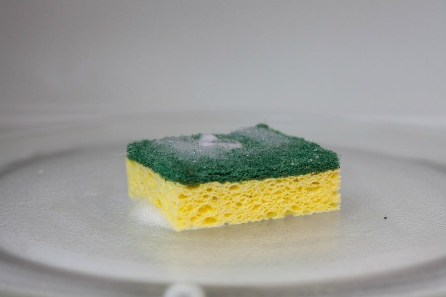 microwave dirty sponge