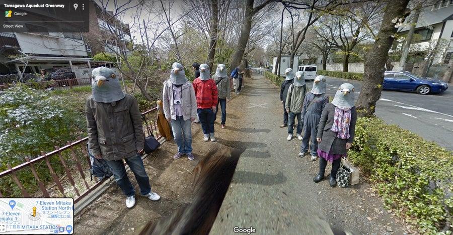 Pidgeon folk Google Street View
