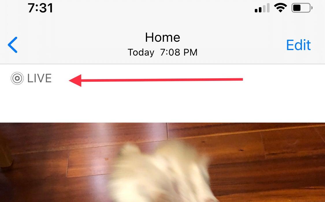 live photo icon on iphone